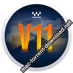 Waves 11 Complete icon